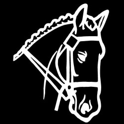 Stickers chevaux licornes
