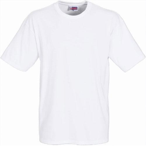 Tee shirt vierge